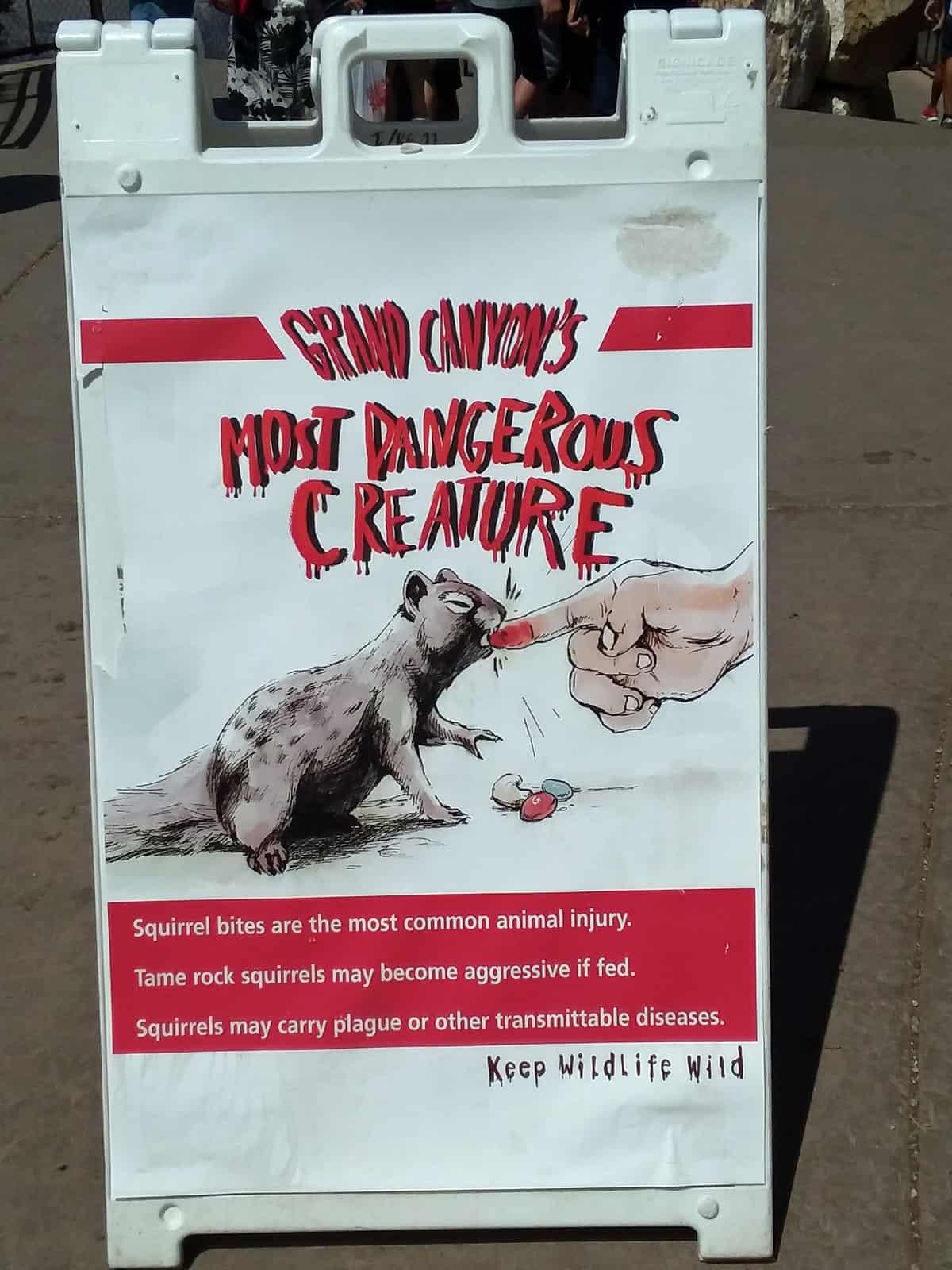 Squirrel Warning Sign at Grand Canyon