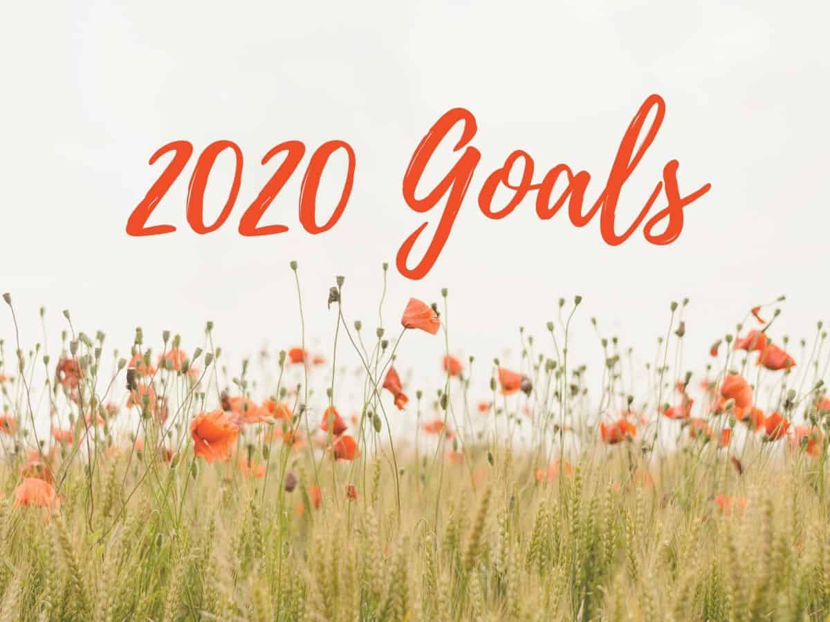 2020 Goals Graphic