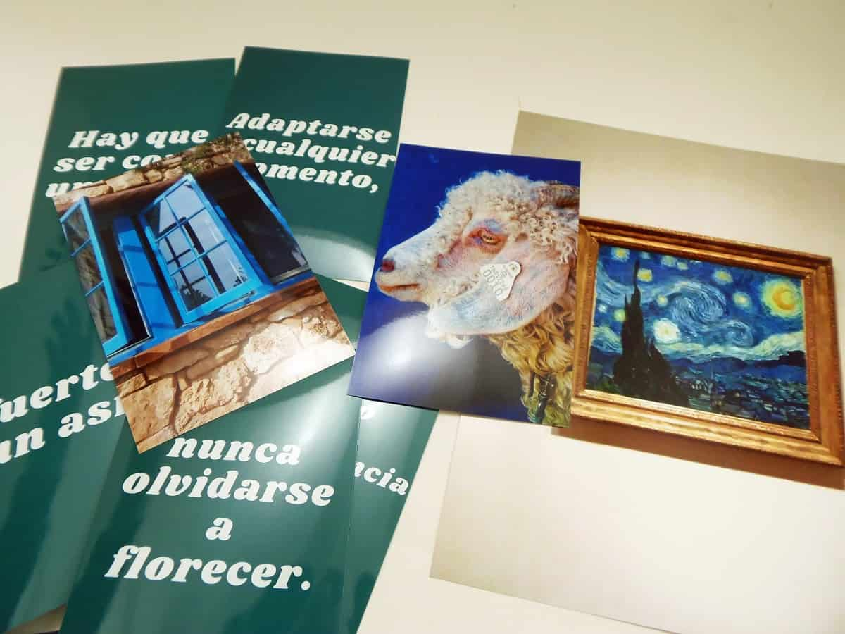 Free Photos for Wall Art