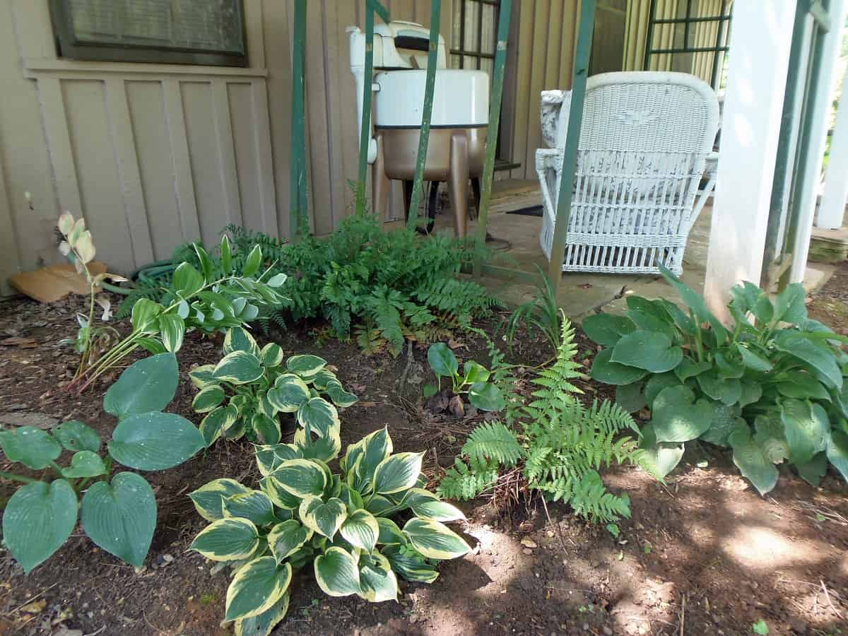 Garden Bed to Left of Porch