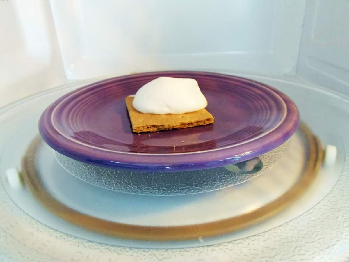 S'more Made in the Microwave