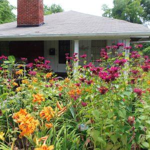 Side Garden in Late June