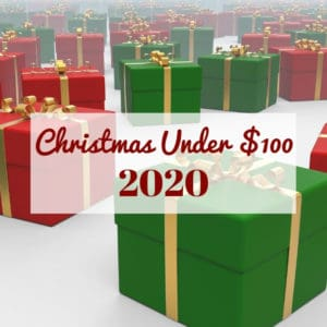 Christmas Under $100: 2020