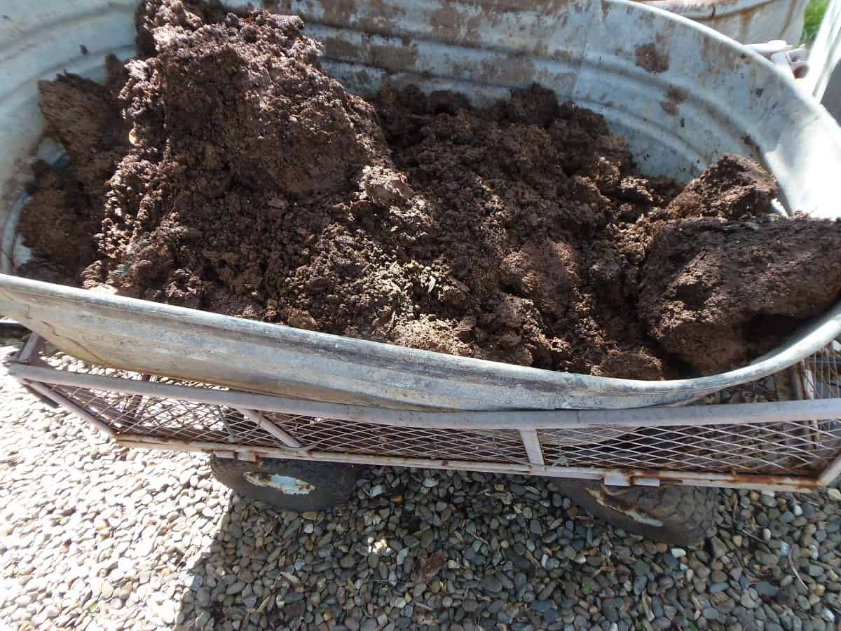 Wagonload of Compost