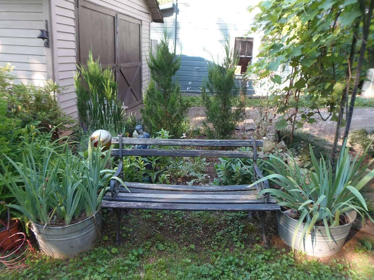 Bench in Front of Garden Bed