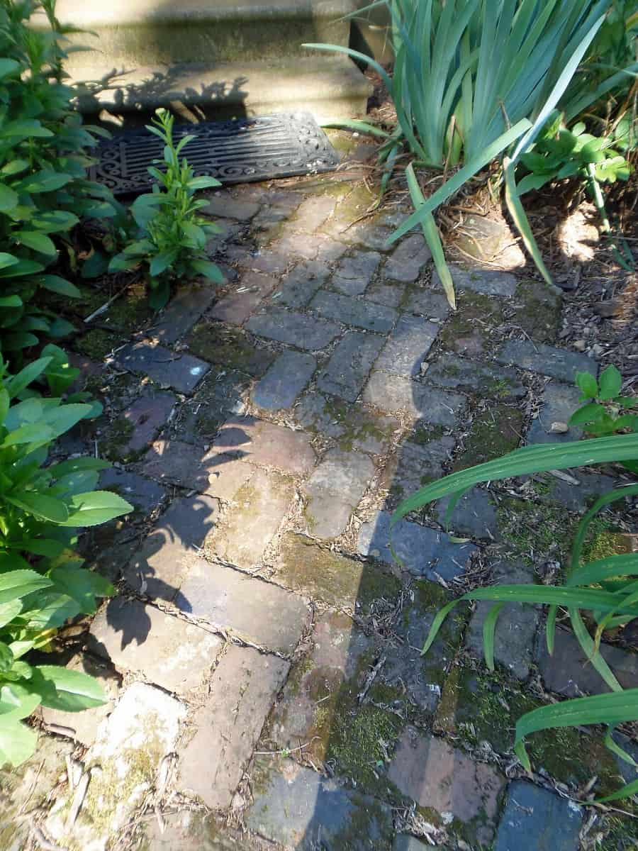 Herringbone Brick Path