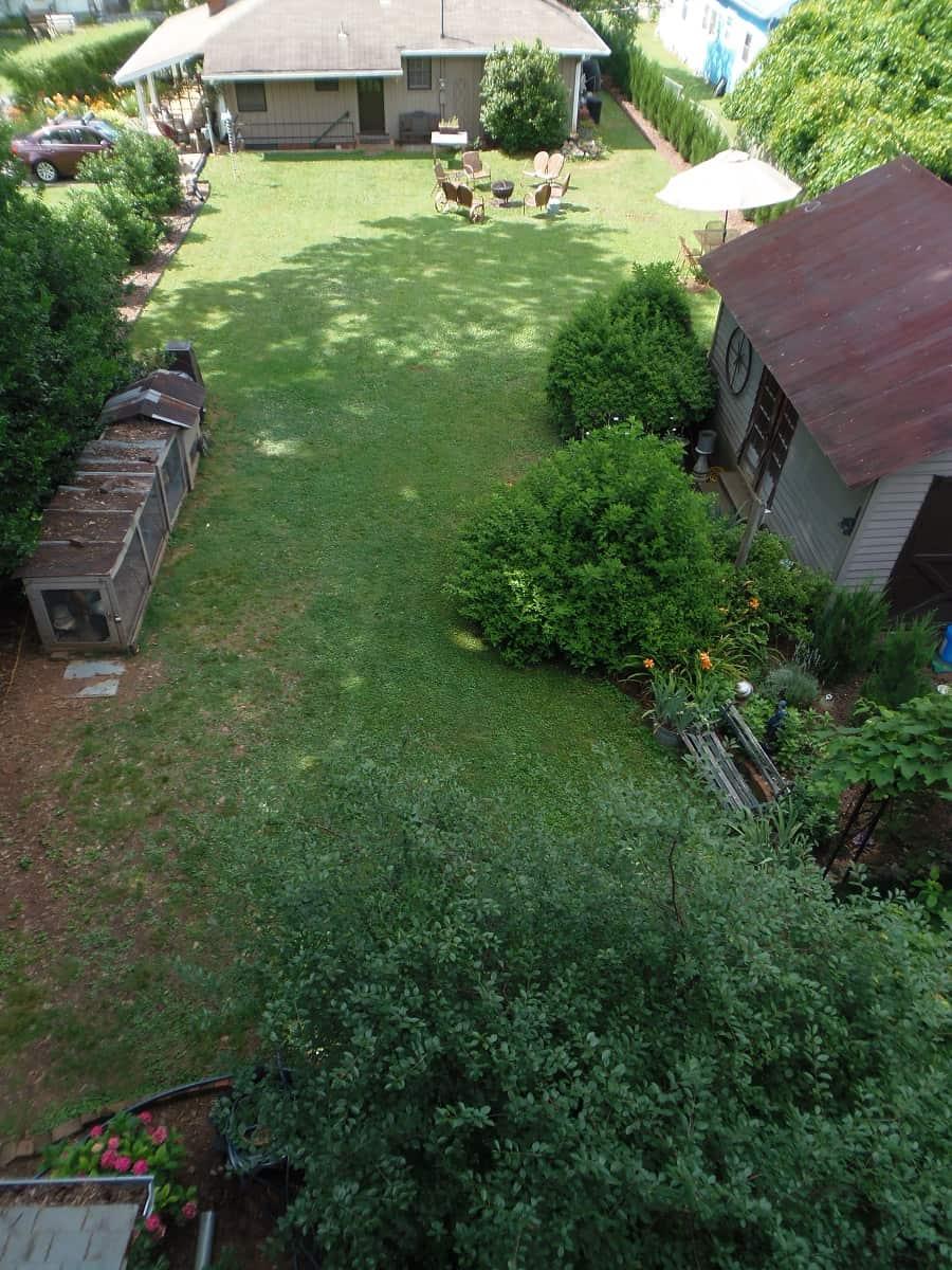 Long-View of Backyard