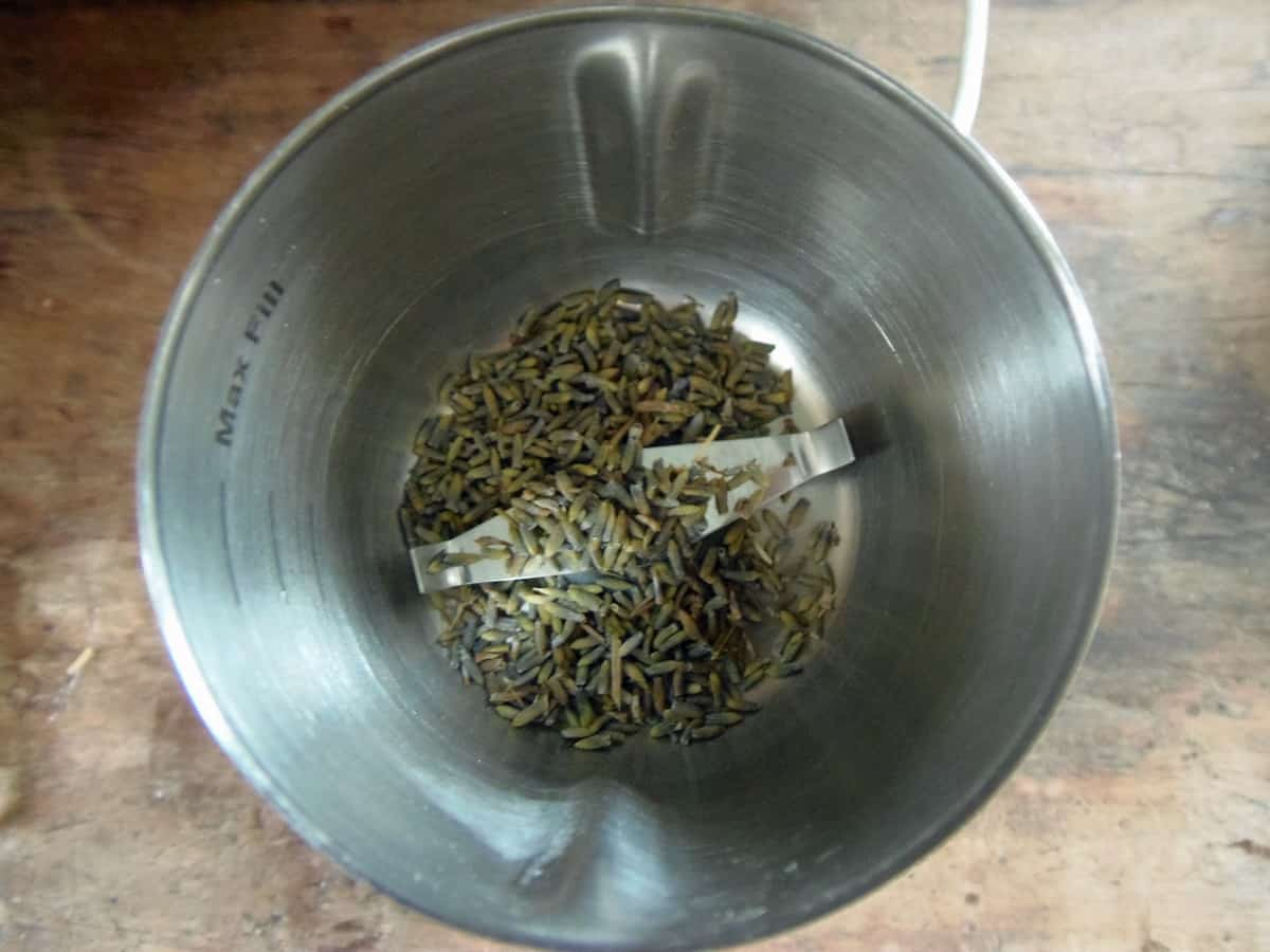 Place Dried Lavender Buds in Spice Grinder